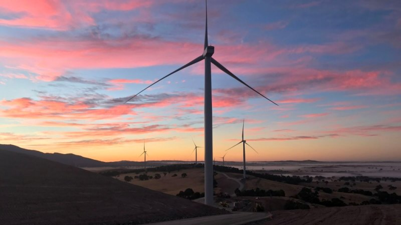 'Tsunami of investment': Bankers say lack of policy not slowing renewables boom
