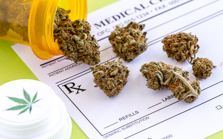 A gain for pain: legalising cannabis could help people in pain