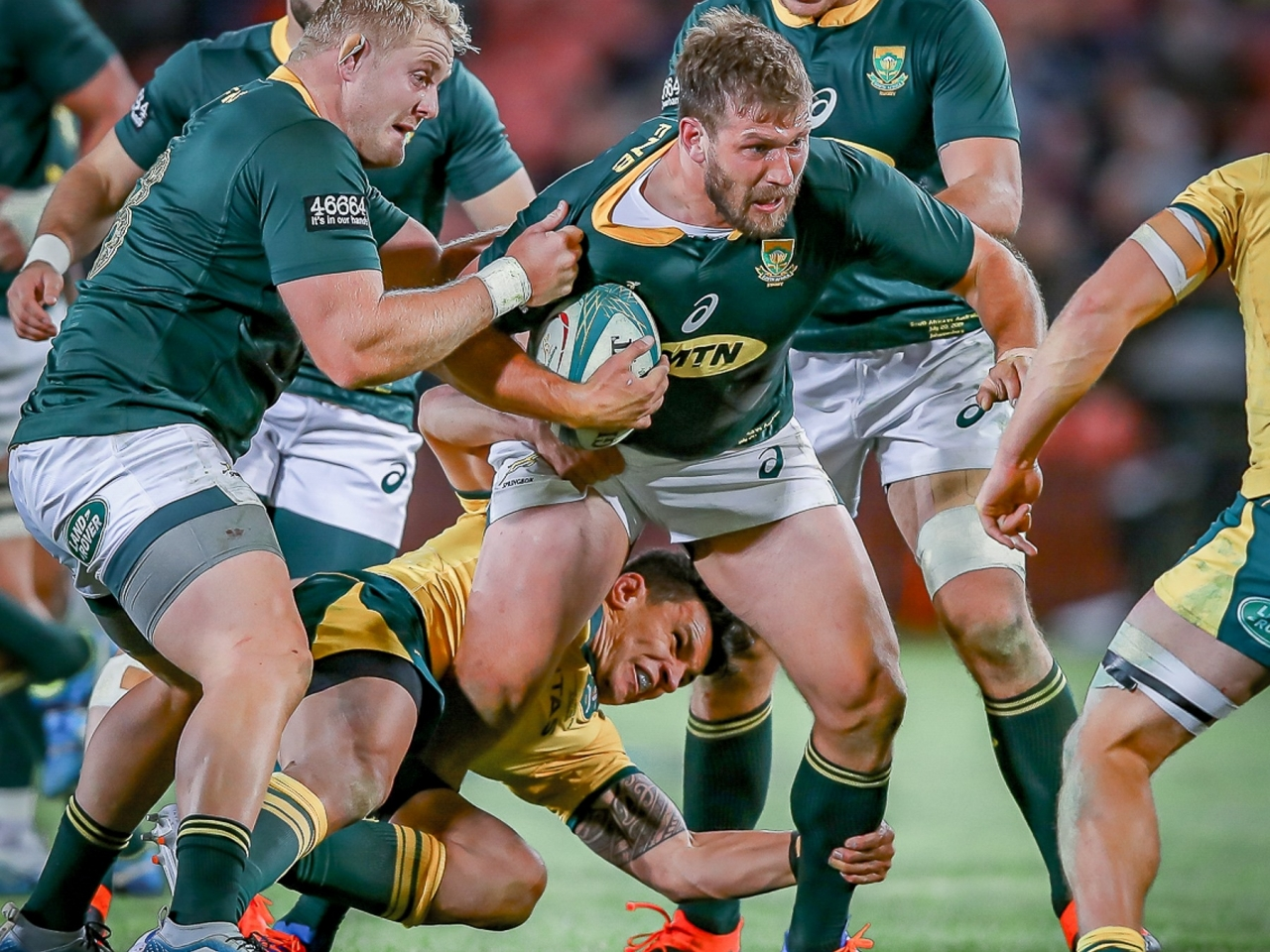 Springboks exit from Rugby Championship confirmed