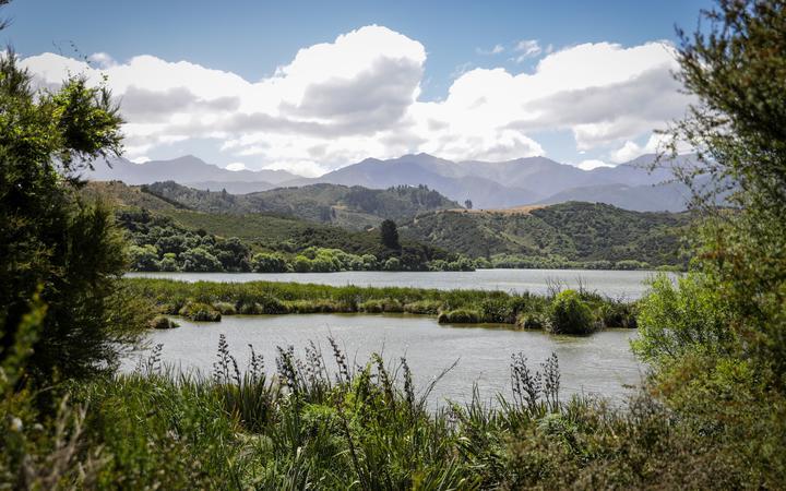 Kaikōura wetlands: '100 years to destroy, another 100 to restore'
